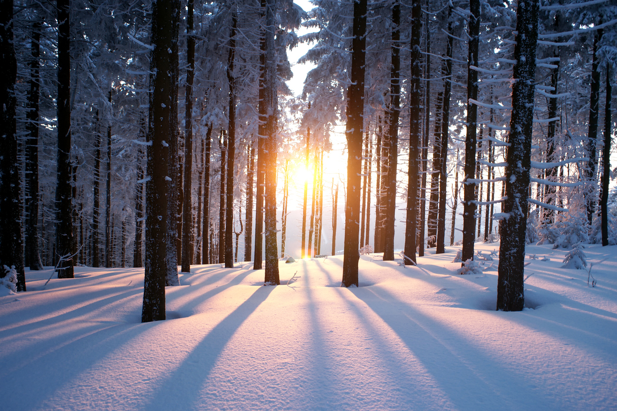 Winter is Coming. Here's Why You Should Walk More