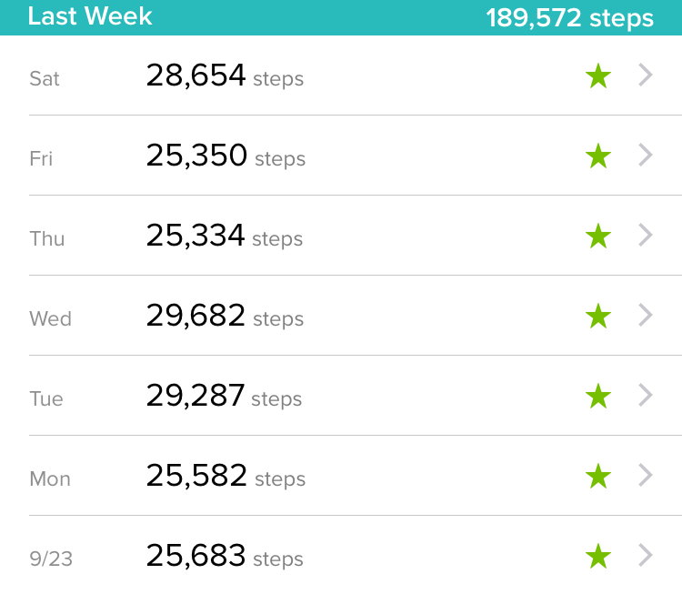 Did I Make a Mistake Trying To Get 20,000 Steps a Day?